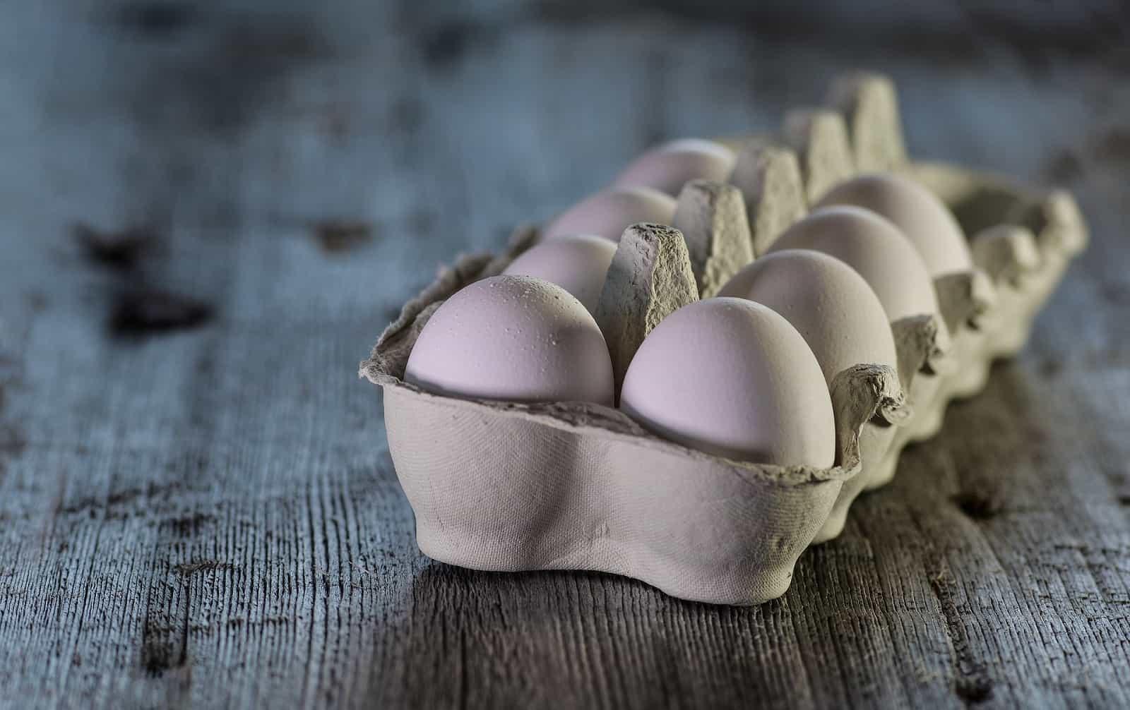 hållbarhet på ägg